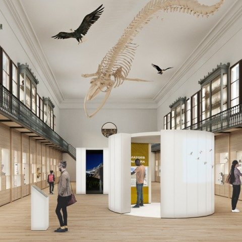 Tercer premi concurs museu Martorell