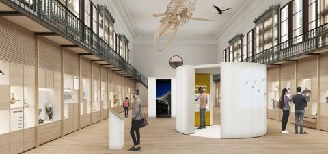 Rehabilitació Museu Martorell